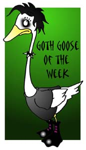 goth goose of the week